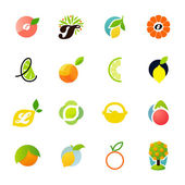 Citrus family - lemon, orange, lime, grapefruit. Vector logos — Stock Vector