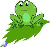 Frog on a leaf — Stock Vector