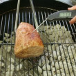 Measuring Rump Roast Heat — Stock Video