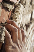 Climbing Brick — Stock Photo