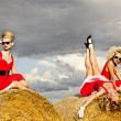Girls in the field - Stock Photo