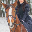 Stock Photo: Beautiful womand horse in winter