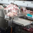 Meat factory — Stock Photo #21825381