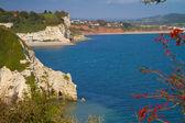 Devon cliffs near Beer and Seaton — Stock Photo