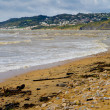 charmouth beach in dorset — Stock Photo