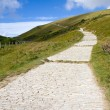 Stock Photo: South-West coastal path from Lulworth Cove to Durdle Door Dorset