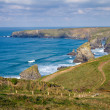 Stock Photo: South West Coastal Path BedruthNorth Cornwall England UK