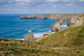 South West Coastal Path Bedruthan North Cornwall England UK — Stock Photo