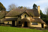 Thatched cottage in an English village — Stock Photo