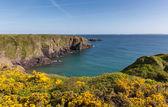 Caerfai Bay West Wales UK near St Davids — Stock Photo