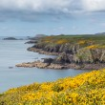 ������, ������: Coast of Wales