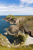 Wooltack Point hill overlooking Skomer Island Pembrokeshire West Wales — Stock Photo