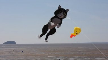Cat kite at the Weston-super-Mare Kite Festival in Somerset England — Stock Video