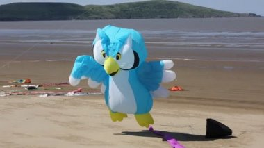 Owl Kite at the Weston-super-Mare Kite Festival in Somerset England — Stock Video