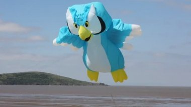 Owl kite at Weston-super-mare kite festival — Stock Video