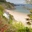 Stock Photo: North beach Tenby Wales