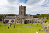 St Davids Cathedral in St Davids City Pembrokeshire Wales — Stock Photo