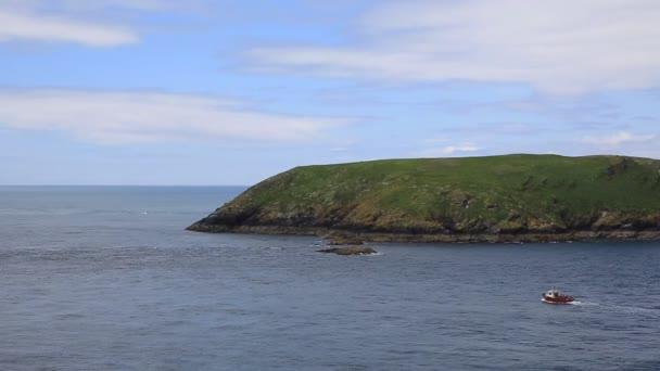Skomer island pembrokeshire west wales connus pour les macareux, la faune et une réserve naturelle nationale — Vidéo