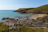 Cornish norte costa de cornwall perto polzeath — Fotografia Stock