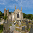 St Marys Church Appledore Devon England — Stock Photo