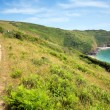 Stock Photo: South West West Coast Path Lantic Bay Cornwall England