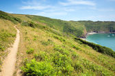 Sud ouest côte ouest chemin lantic bay cornwall en angleterre — Photo