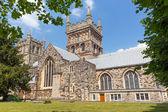 Wimborne Minster church Dorset England — Stock Photo