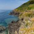 Coastal view from Polperro — Stock Photo