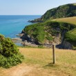 Stock Photo: South West Coast Path from Pentewtowards Mevagissey Cornwall England