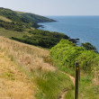 Stock Photo: South West Coast Path from Polkerris Cornwall heading in southerly direction on beautiful summer day