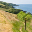 South West Coast Path from Polkerris Cornwall heading in a southerly direction on a beautiful summer day — Stock Photo