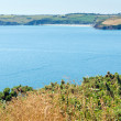 Stock Photo: Mevagissey Bay from Black Head headland near St Austell Cornwall England