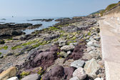 Colourful rocks between east and west beaches at Portwrinkle Whitsand Bay near Looe Cornwall England United Kingdom — Stock Photo