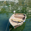 Stock Photo: Old rough looking dinghy boat with seagull paddle in green sea