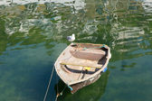 Old rough looking dinghy boat with seagull paddle in green sea — Stock Photo