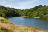 Hawkridge reservoir Quantock Hills Somerset — Stock Photo