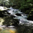 Stock Video: GolithFalls River Fowey Bodmin Moor Cornwall England, Cornish tourist attraction