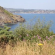Stock Video: St Austell Bay Cornwall from Black Head headland near Trenarren between Porthpeand Pentewnear St Austell Cornwall England on beautiful summer day