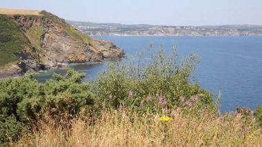 St Austell Bay Cornwall from Black Head headland near Trenarren between Porthpean and Pentewan near St Austell Cornwall England on a beautiful summer day — 图库视频影像