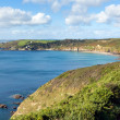 South West Coast Path Kenneggy Sand Cornwall England with blue sky and sea on a sunny day — Stock Photo