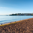 Paignton beach Torbay Devon England near tourist destinations of Torquay and Brixham — Stock Photo