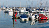 Motor boats in a marina with masts and calm blue sea — Stock Photo