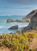 Cornwall costa st agnes Inghilterra Regno Unito tra newquay e st ives — Foto Stock
