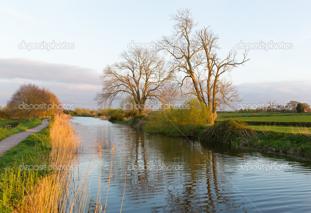 Bridgwater and Taunton Canal Somerset England UK peaceful waterway ...