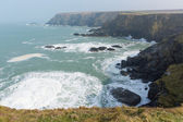 View from Navax Point Seals Mutton Cove near Godrevy St Ives Bay Cornwall coast England UK where the seals can be seen — Stock Photo