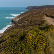 South West Coast Path near Porthtowan and St Agnes Cornwall England UK a popular tourist destination on the North Cornish heritage coastline — Stock Photo #46220221