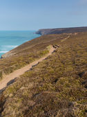South West Coast Path near Porthtowan and St Agnes Cornwall England UK a popular tourist destination on the North Cornish heritage coastline — Stock Photo