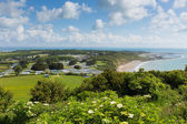 View of Whitecliff Bay near Bembridge east Isle of Wight — Stock Photo