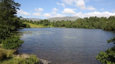 Tarn Hows near Hawkshead Lake District National Park England uk on a beautiful sunny summer day — Stock Video