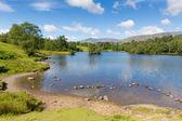 Tarn Hows Lake District National Park Cumbria England uk near Hawkshead — Stock Photo